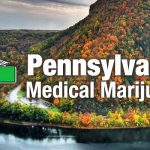 pastate medical marijuana