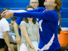 Lady 'Cats fall to P-O 3-0