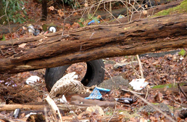Debris is seen at Young Woman's Creek in North Bend,  Chapman Township, Clinton County.